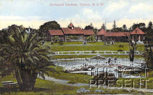The Zoological Gardens, Sydney