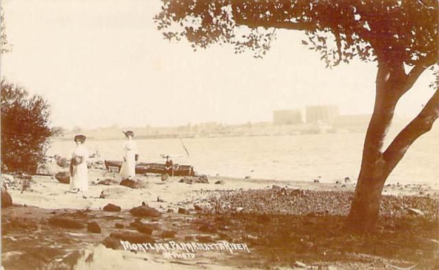Mortlake Parramatta River Front