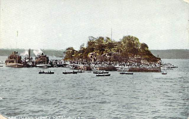 shark-island-sydney-harbour-nsw-paddle-steamers-front
