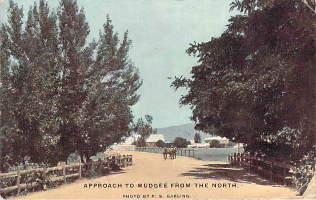 Approach To Mudgee From The North Front