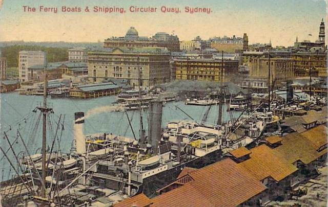 The ferry boats and shipping circular quay sydney front.jpg