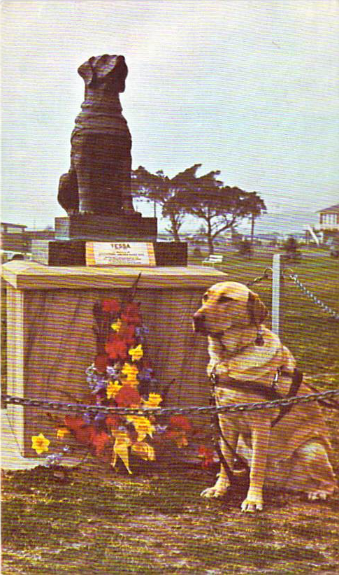 tessa-guide-dog-statue-front.jpg